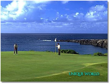 5* The Ritz-Carlton Kapalua