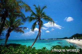 Экзотический отдых на Багамских островах