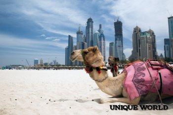 Дубаи туристический