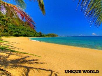 **Весенний Тунис просто создан для отдыха