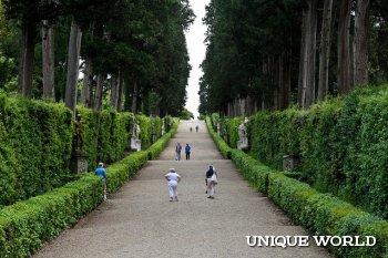 Флоренция: сады Боболи, Дворец Питти, Площадь Синьорини