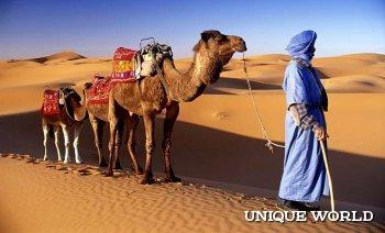 **Марокко. Что нужно посмотреть в первую очередь