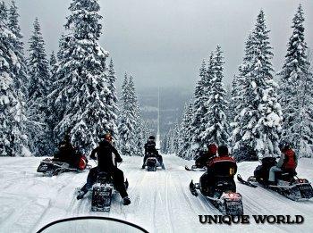На снегоходах по шведской Лапландии
